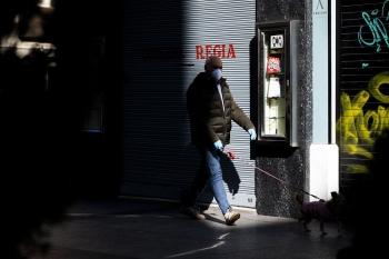 Pasea Perro Calle Alfonso